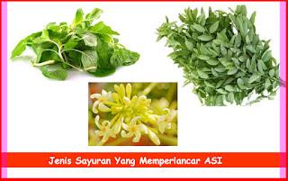 Jenis Sayuran Yang Memperlancar ASI