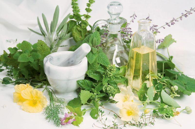 gyógynövények gyűjtése ízületi betegségek kezelésére)