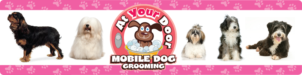 At Your Door Grooming News