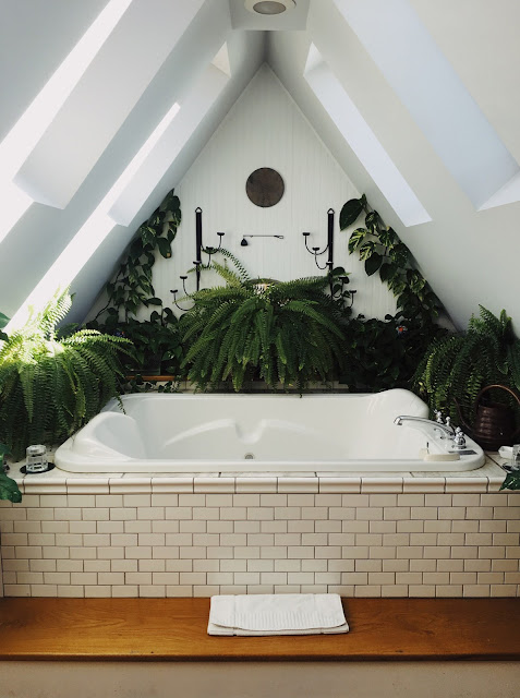 Tropical plants introduce a softer touch in this modern design.