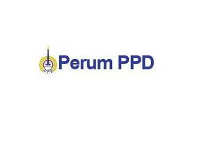 Lowongan Kerja BUMN Perum PPD untuk UMUM