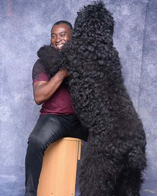 Check out comedian Yibo Koko