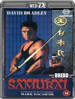 American Samurai 1992 Dual Audio BRRip 480p 250Mb x264