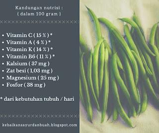 Kandungan nutrisi kacang buncis