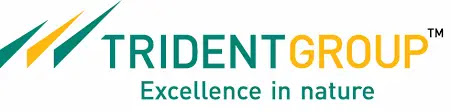 Trident Ltd