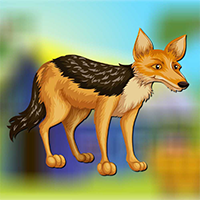 AvmGames Cute Wolf Escape…