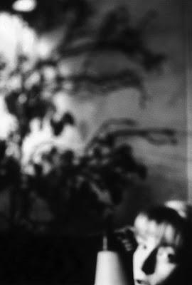 exposition photo Christine Delory entaille de l'exil Paris Taylor