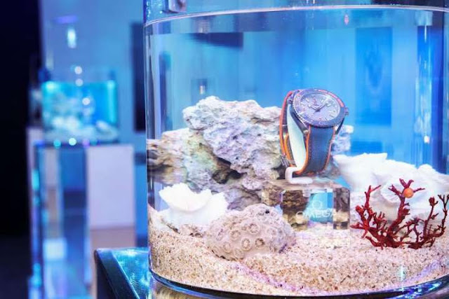 Omega專櫃錶 價格 價錢 官方網站 哪裡買