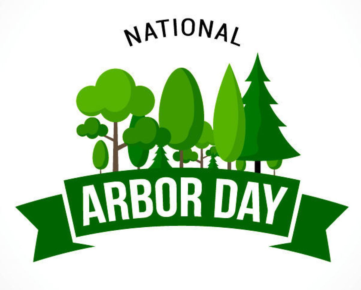 Arbor Day Quotes, Wishes, Messages, Greetings, History, Facts, Images, Pictures, Photos, Wallpaper