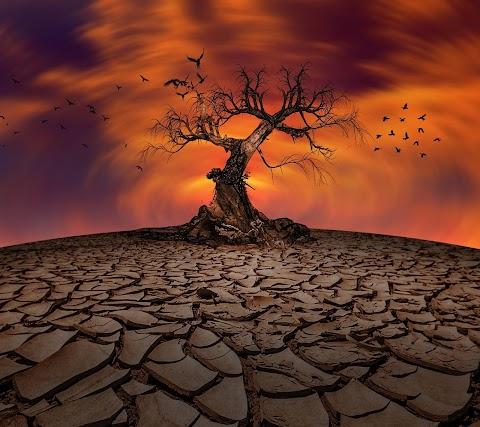 Vùng Đất Chết Chóc