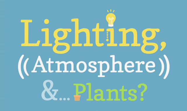 Image: Lighting, Atmosphere and Plants in Pursuit of a Happy Office