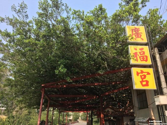 南投埔里廣福宮-有一顆能避暑的大榕樹