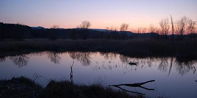 Reserva Natural de Sebes (Flix, Tarragona)