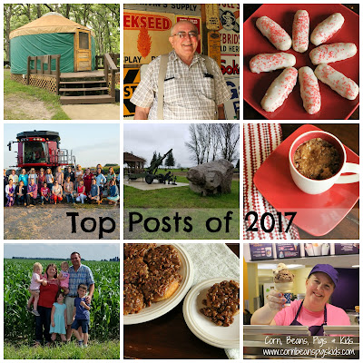 Look Back at the Top Farm, Family, Recipe and Comments for a Cause Blog Posts from 2017