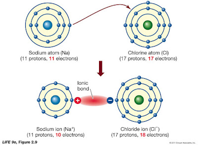savvychemist: Ionic Bonding (2) Dot and cross diagrams