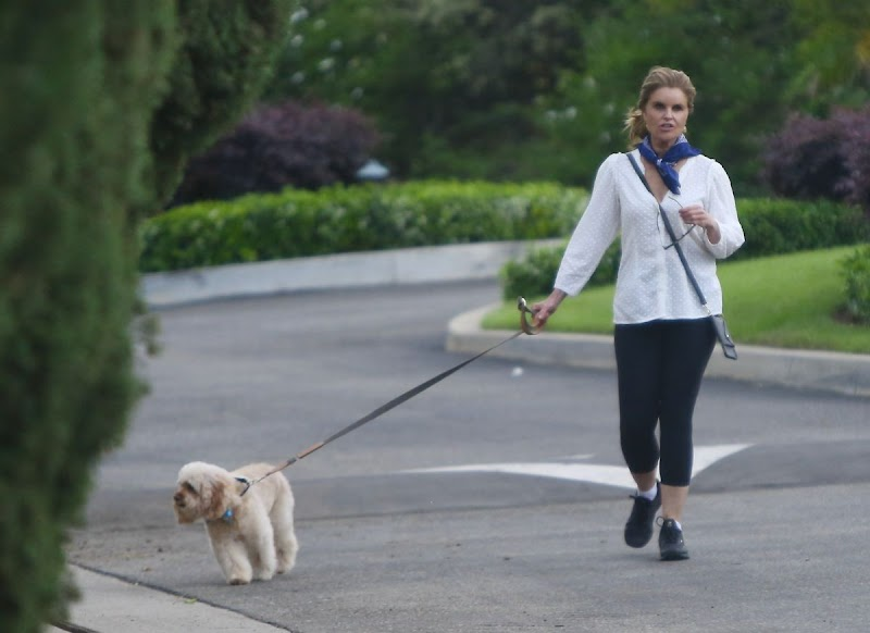 Maria Shriver Outside with Her Dog Brentwood 7 May -2020
