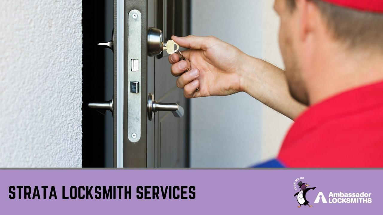 professional locksmith in Newcastle
