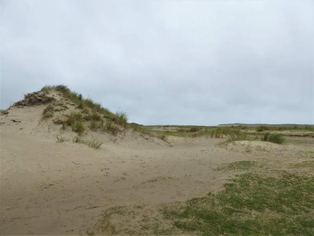 dune nella laguna De Slufter