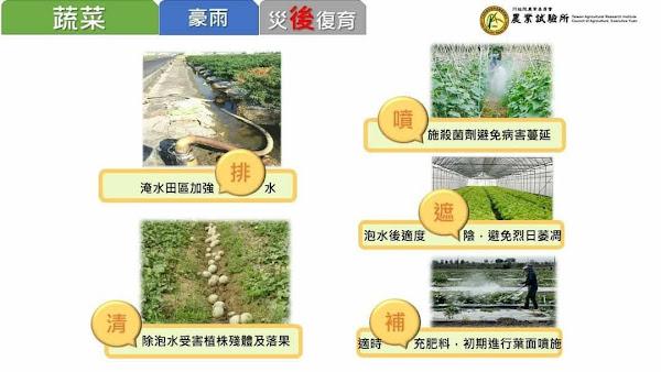 滯留鋒面影響恐致災 彰化縣府提醒農民加強農作物防範措施