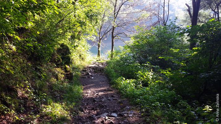 Тропа вокруг Биоградского озера, Черногория