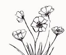 bunga melati hitam putih