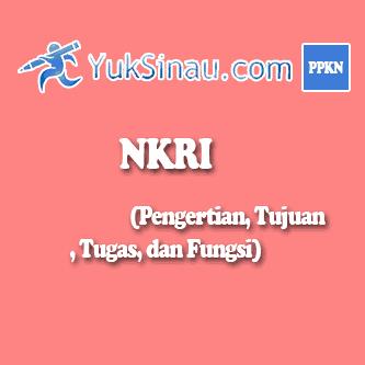 fungsi dan tujuan NKRI