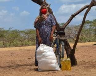 https://www.notasrosas.com/Cerrejón felicita al Programa Mundial de Alimentos (WFP), galardonado con el Premio Nobel de La Paz