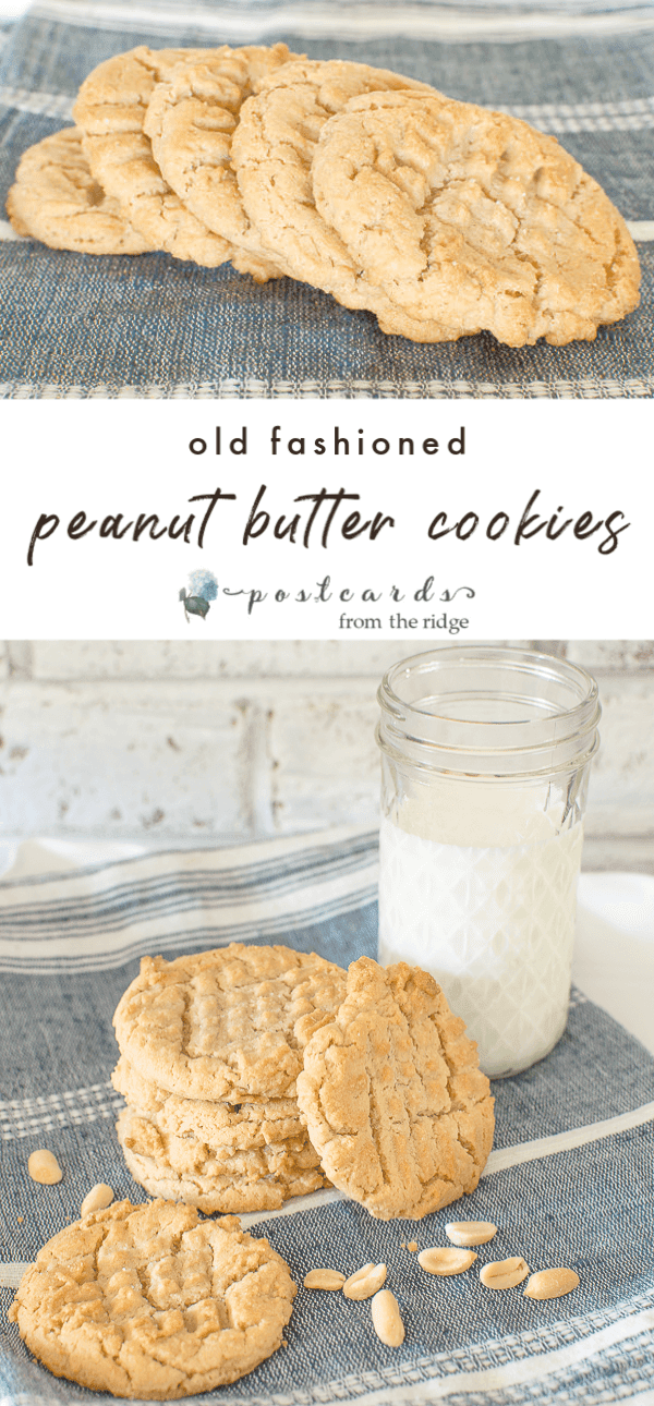 homemade peanut butter cookies and jar of milk