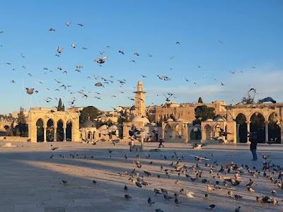 محافظة القدس تدين منع الاحتلال اقامة اجتماع تشاوري حول الانتخابات في العاصمة