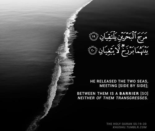 Beautiful Islamic Quotes About Life With Images In English Islamic Pillars Islamic Dresses