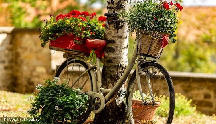 Pimp a bike - Räder als Deko im Garten