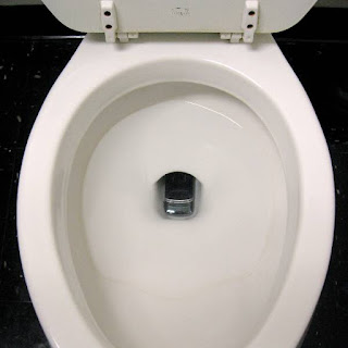 cell phone lying in toilet bowl