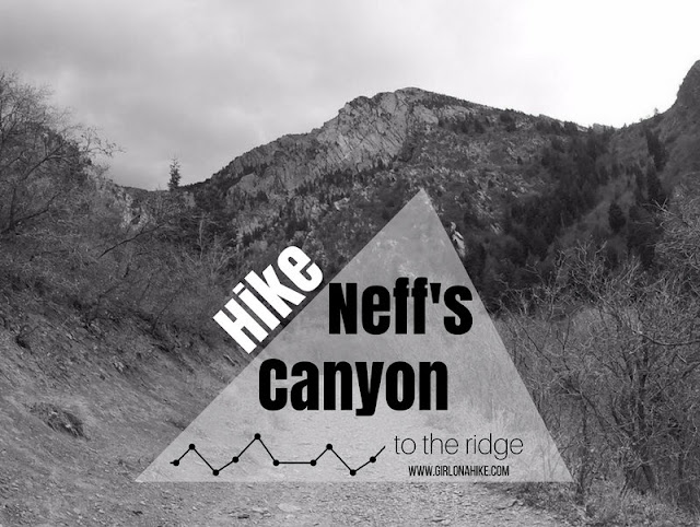 Hiking Neff's Canyon to the Ridge