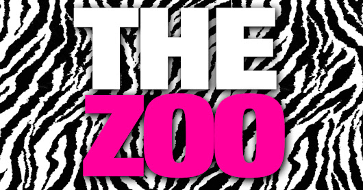 The Nutty Irishman: The Zoo, Top 4's Party Band, Friday February 2nd, 11:30PM