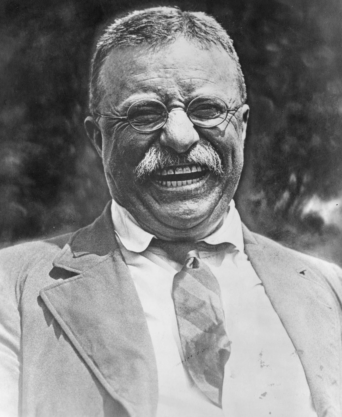an analysis of theodore roosevelts political accomplishments An analysis of the famous phrases of some the life and accomplishments of theodore roosevelt 901 an analysis of theodore roosevelt's political accomplishments.