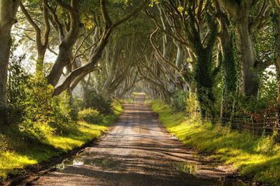 خلفيات طبيعية روعة ممشي