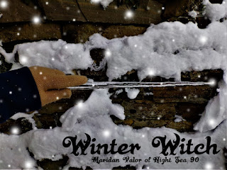 A Few Of My Favorite Things; Random Pictures, winter witch