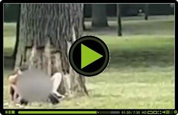 XAMOΣ!!! Μεθυσμένοι κάνουν σ3ξ στο πάρκο και τους βιντεοσκοπούν!