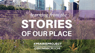 Stories of a Place: Exploring Resilience Strategies at Home