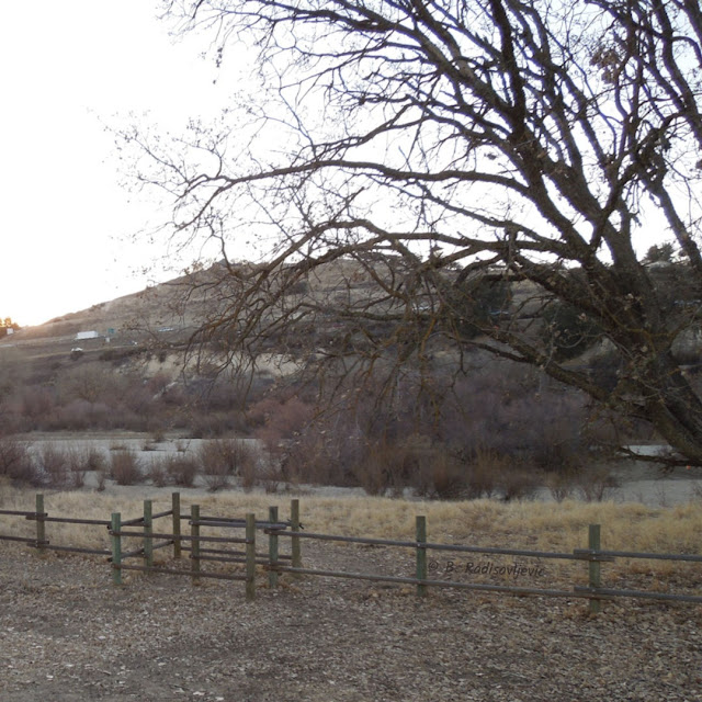 """""""Larry"""" Moore Park in Paso Robles: A Photographic Review - River Access Pass Through"""