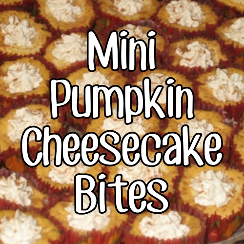 Mini Pumpkin Swirl Cheesecake Bites