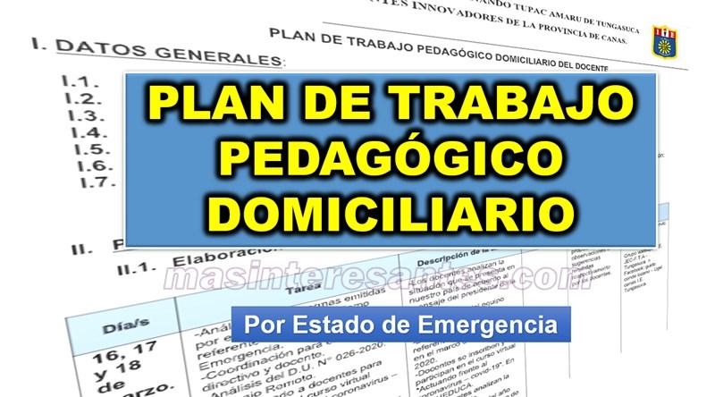 plan de trabajo pedagogico domiciliario