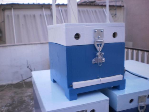 Κατασκευή μελισσοκομικής κυψέλης από μαθήτρια οδηγίες και video
