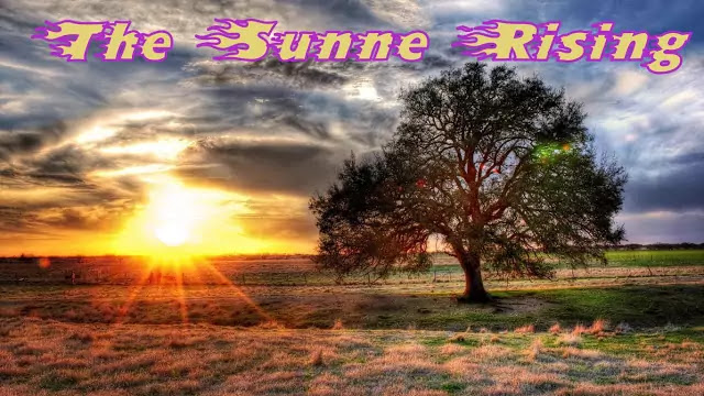 "Text & Line by Lline Annotations of Donne's ""The Sunne Rising"""