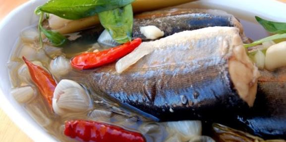 6 Manfaat Ikan Patin, Jenis Ikan Patin Dan Makanannya