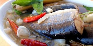manfaat ikan patin kesehatan ibu hamil menyusui anak balita