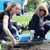 Csodaszép kezdeményezés: több mint 7000 virágot ültettek el a vizes-vb kezdetére