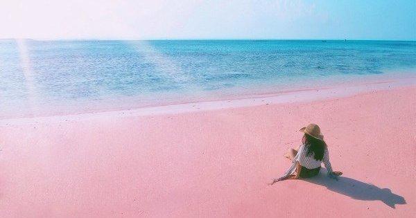 Pink Beach Lombok (Pantai Pink)