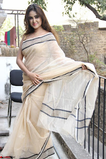 Sony Charishta in Brown saree Cute Beauty   IMG 3597 1600x1067.JPG