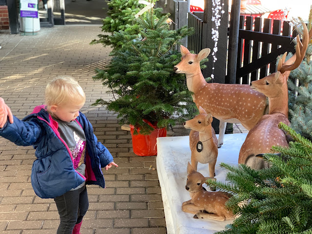Looking at a ceramic deer family outside Santa's Grotto at Wyevale Garden centre